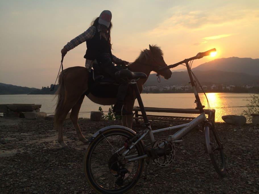 来我家,可以骑马