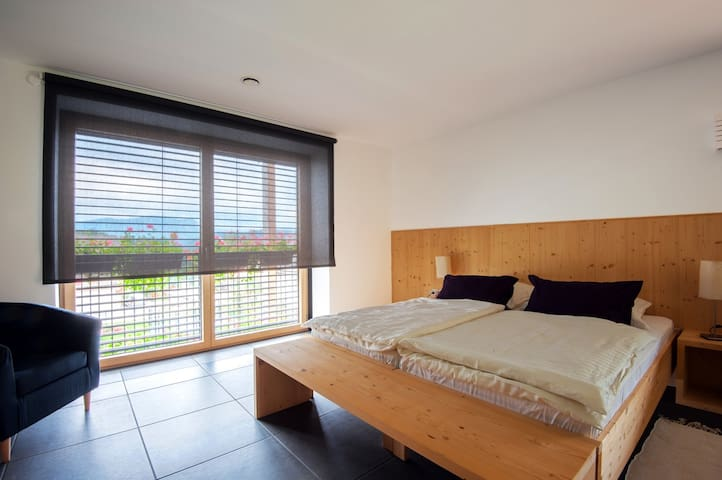 double room with private spa bath AMS Beagle - Podhom - Bed & Breakfast