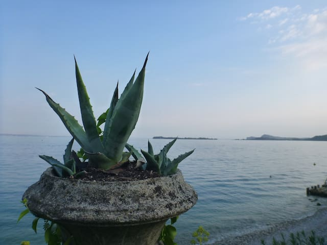Villa with park and private beach - Gardone Riviera - วิลล่า