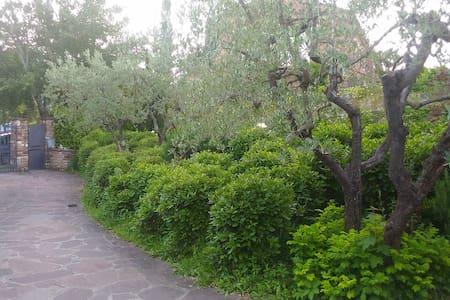 A wonderful place: Chianti! - Tavarnelle - House