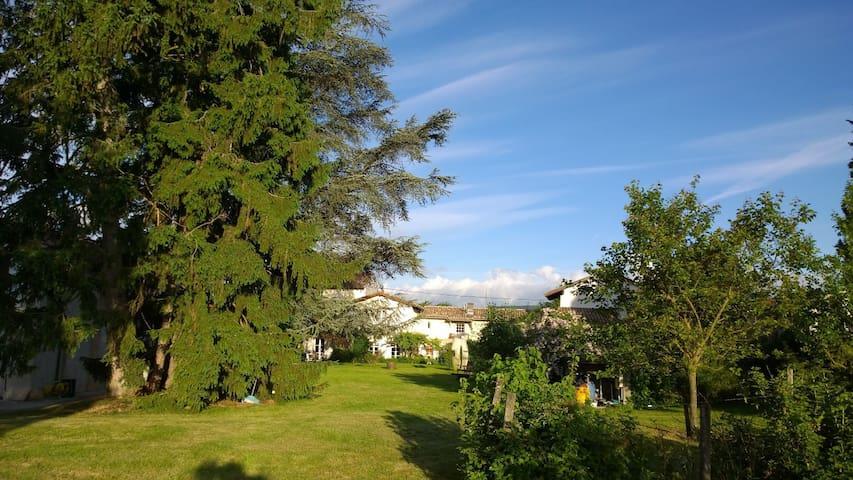 Belle maison avec piscine 10 à 21p - Quincieux - Villa