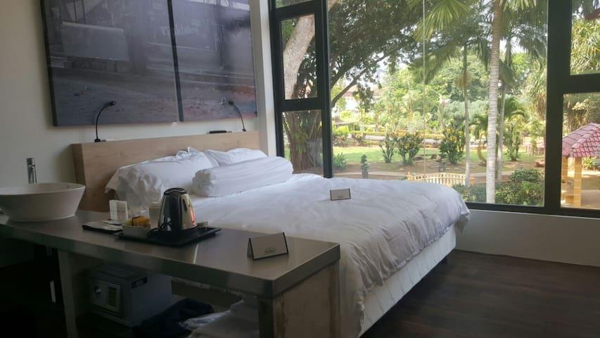 Deluxe King Garden View (Room 218)