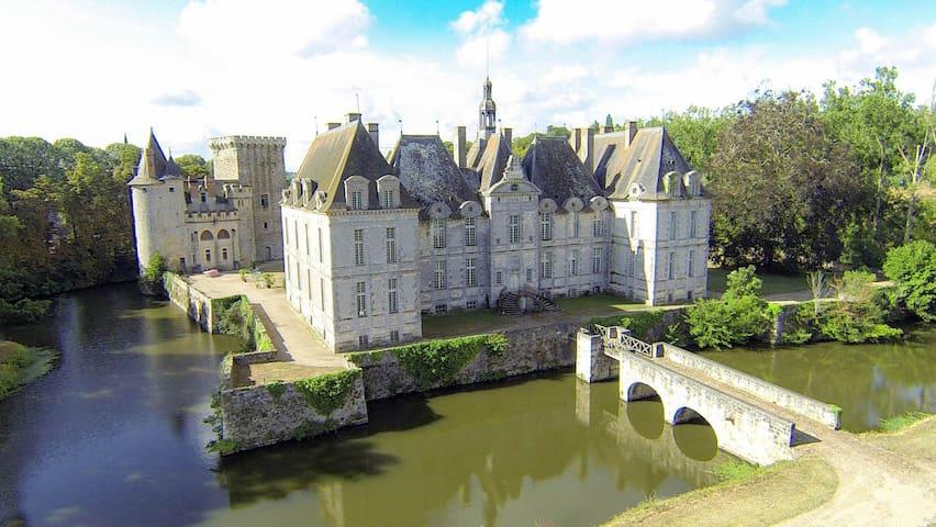 Château de Saint-loup sur Thouet - Loire valley