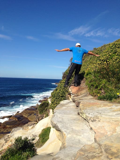 Dee Why headland great picnic spot and cliff Side walk