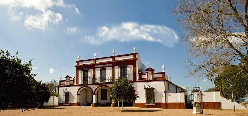 Fabulous Country-House in Jerez de la Frontera - Jerez de la Frontera - Villa