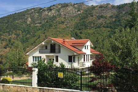 Luxury vila in Macedonian mountains - Bitola