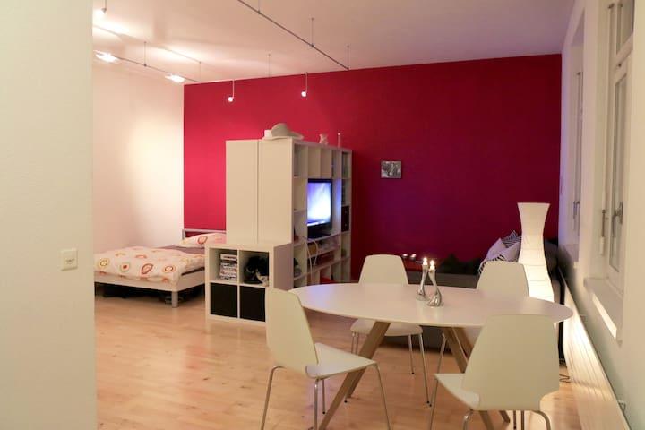 Grosses Studio in Bern inkl. Public Transport - Berna - Apartamento
