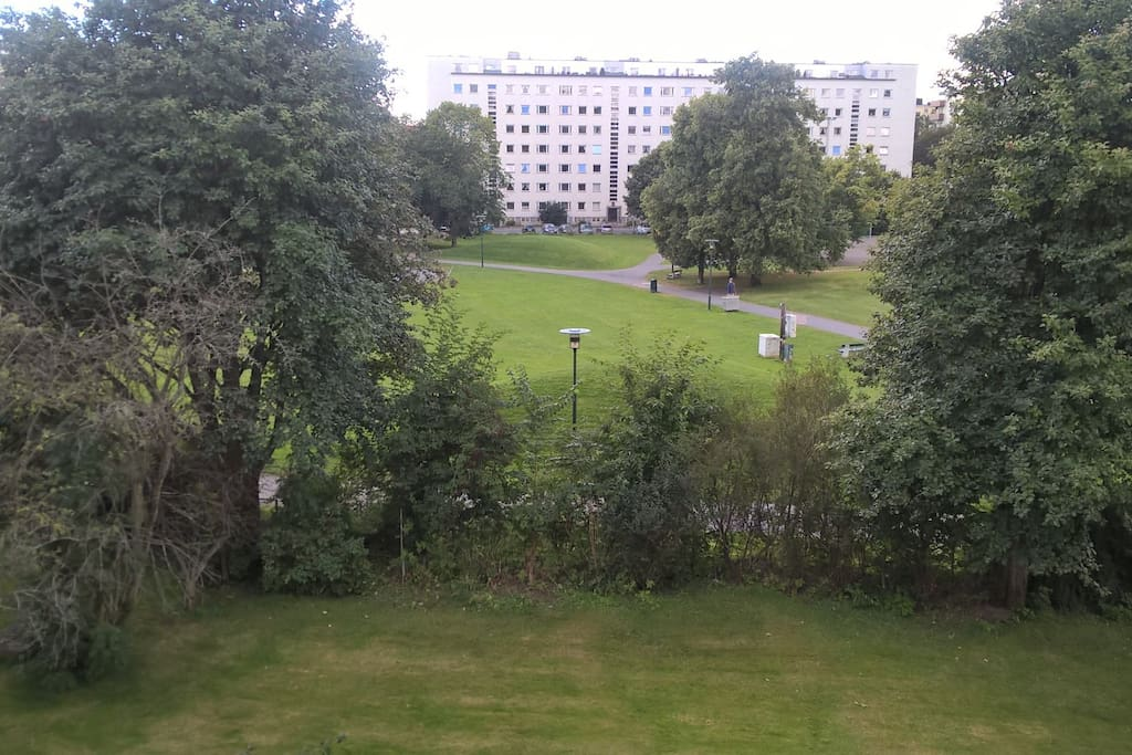 This is the view from the window. Guest have access to the garden area.