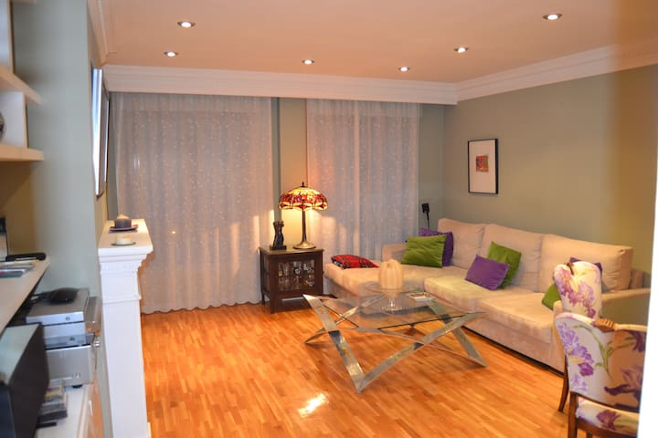 FANTASTICO DUPLEX CENTRO Y PARKING - Segovia - Apartament
