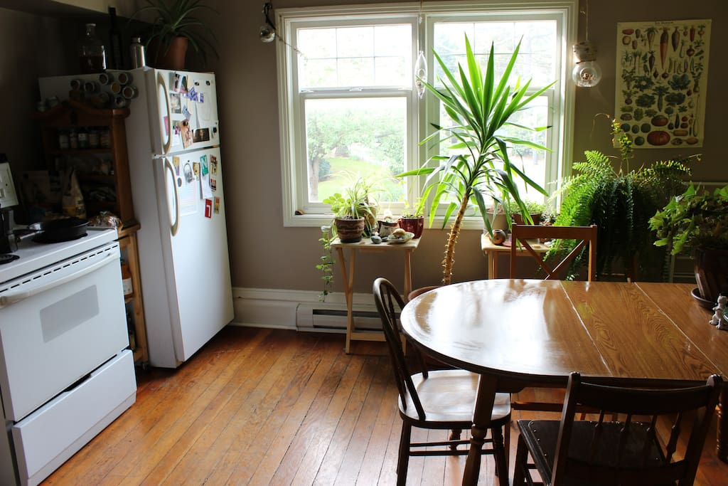 Big, open kitchen space with plants. Dining table seats four.