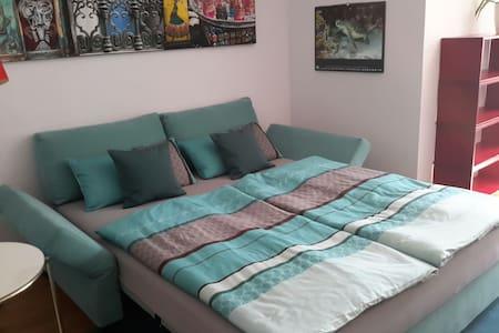 Helle 21 qm mit Bad en suite und TV - Regensburg - Apartment