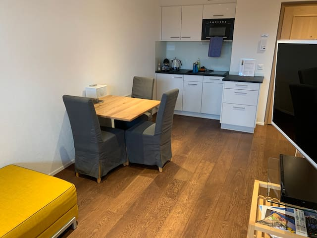 New 2 1/2 room-appartment with separate entrance