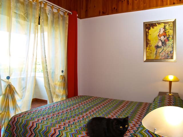 "Bed and Breakfast ""Casa Gamberini"" - Cassacco - Bed & Breakfast"