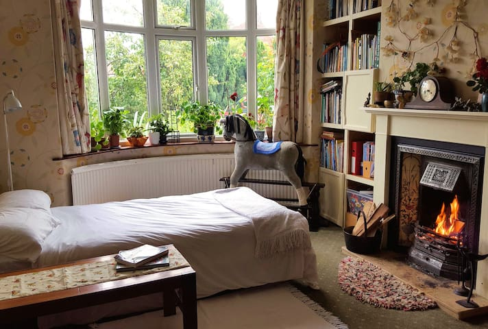Dble/single sunny room with a real coal fire - York - Bed & Breakfast