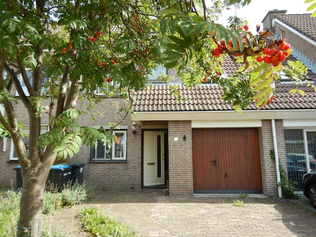 Room for 1  or 2 in Zaandam