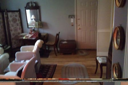 Vintage furnished across from park - 樱桃山(Cherry Hill)