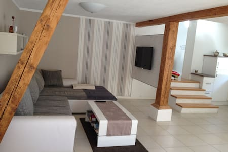Modern, quiet, 2-8 persons Holiday - Rheinau