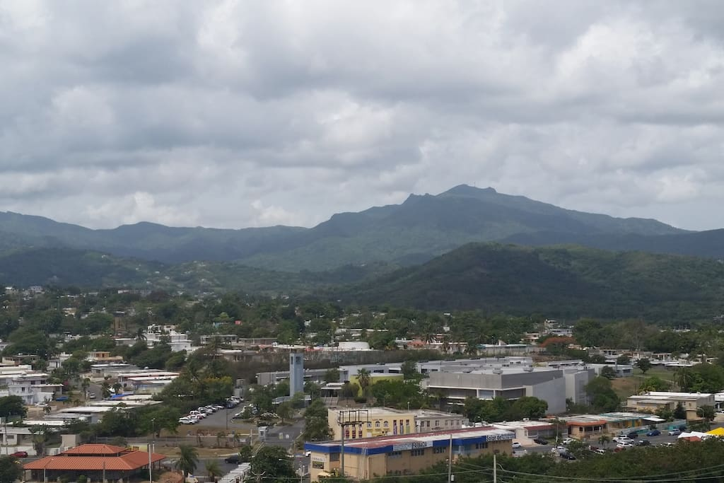 View of the El Yunque National Forest