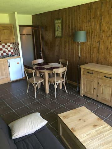 résidence au coeur d'Argentière - Chamonix-Mont-Blanc