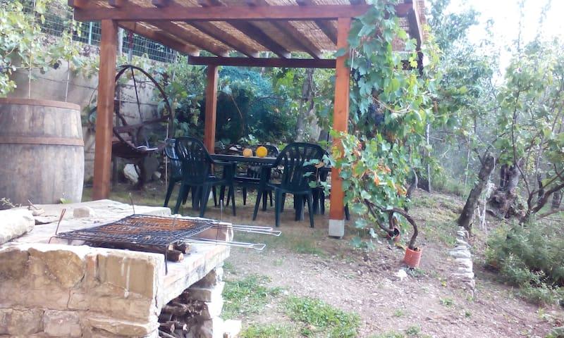 Tuscany, romantic hilltop hideaway  - Villa di Sotto - Apartment