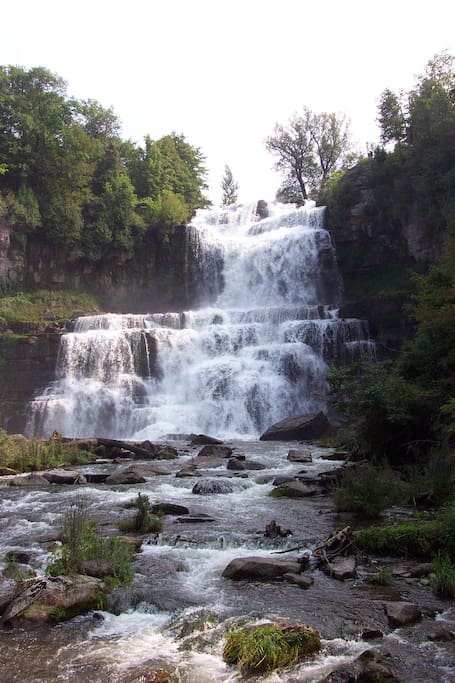 Chittenango Falls is in the front yard.  It is only about 15 feet shorter than Niagara!