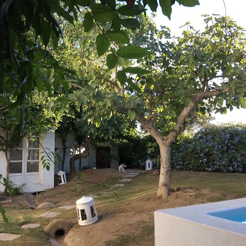Casa junto al Puerto Sotogrande - San Roque - Haus