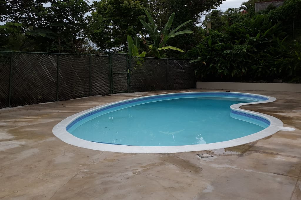 Swimming Pool on property