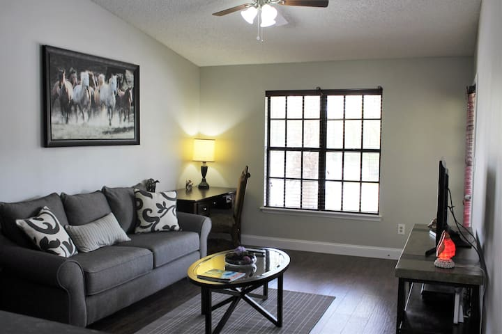 Gated 100% remodeled luxury condo minutes to parks