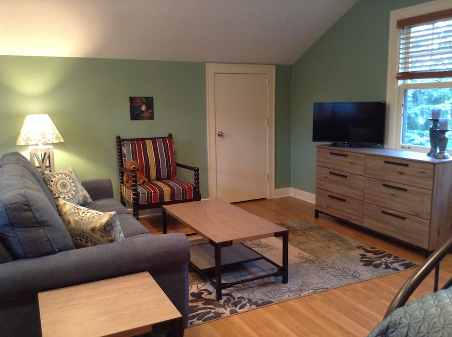 Comfy, Clean, Quiet, Queen Sleeper Sofa, Queen Air Mattress, Television w/Netflix, Wifi, Computer Desk, Shared Bath, Shared access to kitchen and main rooms.