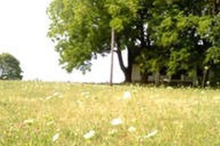 Magnolia Manor Farmstead - Magnolia