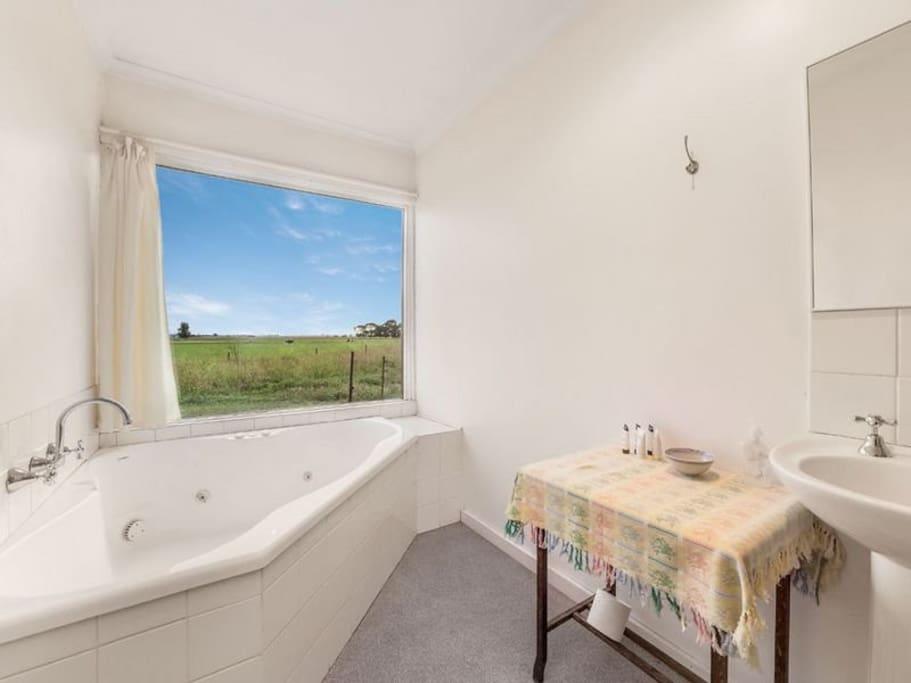 The bathroom, with a spa.