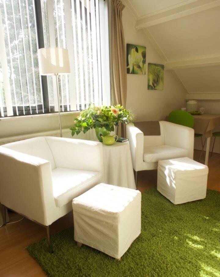 Heerlijk zonnige en ruime kamer