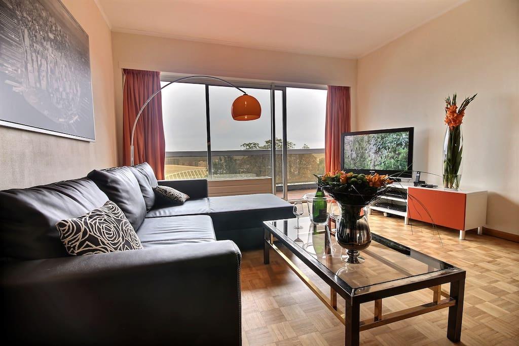 Luminous living room with flat screen