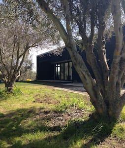Modern olive grove hideaway - Haumoana - Dům