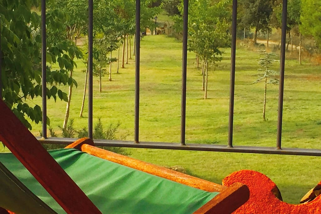 Vistas del jardin des de la terraza