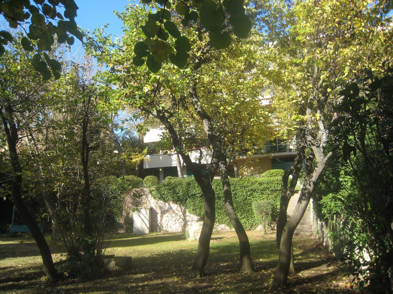 Vue de l'immeuble dans le parc boisé
