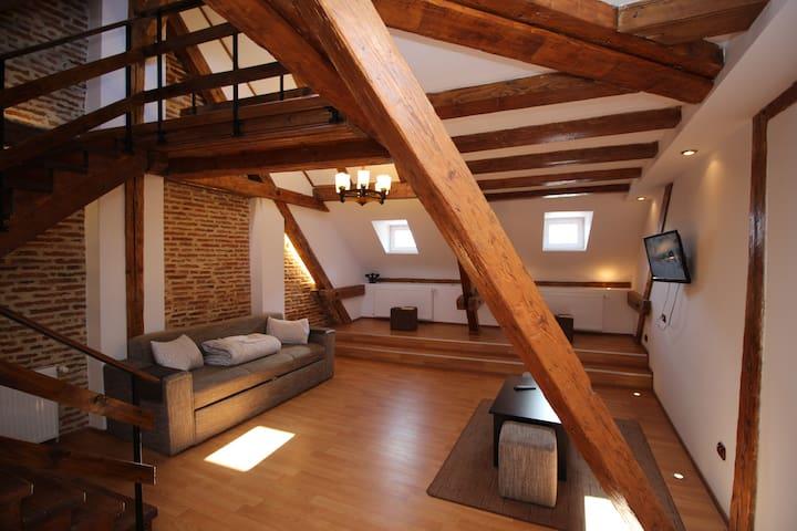 Superb Loft Studio in Main Square - Brașov - Apartment