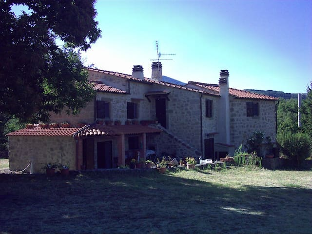 FARMHOUSE VALDORCIA PODERE LE PRESE - Castel del Piano - Appartement