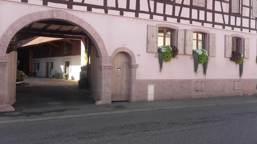 Coté Cour Bischwihr Colmar : Entrée principale