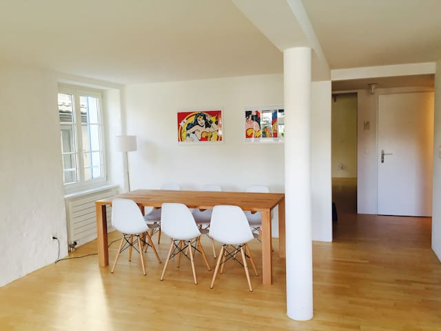 Beautiful apartment with best view. - Zürich - Flat