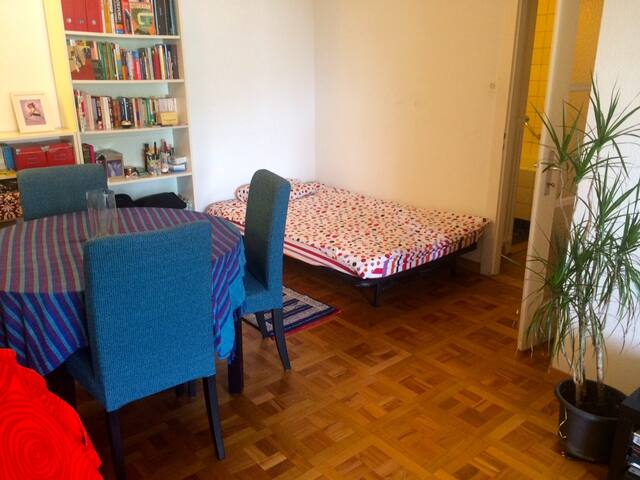 Large private room @ great location - Geneva - Apartemen