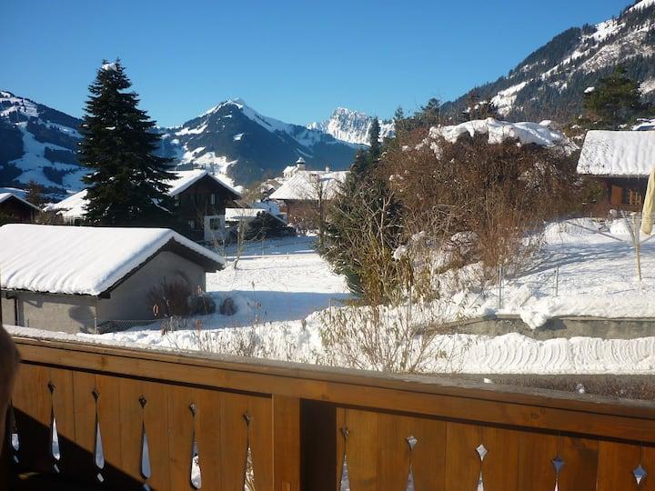 Charming Duplex Gstaad Vallée