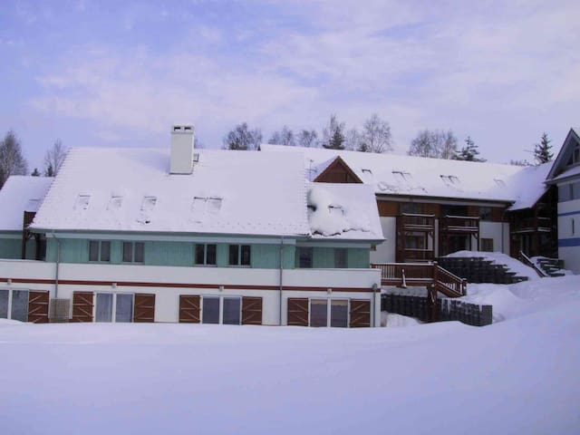 Well equipped apartment 4-6 pers. - Lipno nad Vltavou - Leilighet