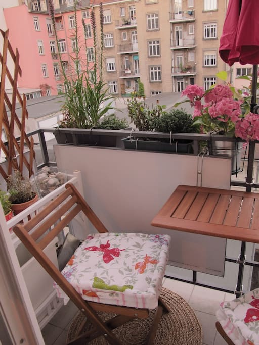 zimmer in sch ner wohnung apartments for rent in strasbourg alsace france
