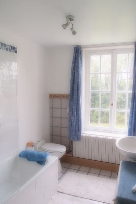 Full bath with overhead shower, toilet and washbasin. There is also a separate shower and toilet