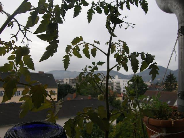 Ruhe Aussicht Bewegung FH-Nähe in Graz Eggenberg - Graz - Wohnung