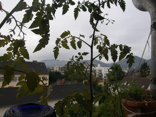 Ruhe Aussicht Bewegung FH-Nähe in Graz Eggenberg - Graz - Apartamento