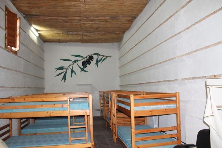 habitacion literas 10 pax cortijo - Vega de Granada - Slaapzaal