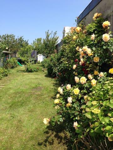 Jolie maison, au calme avec un beau jardin - Berck - Stadswoning