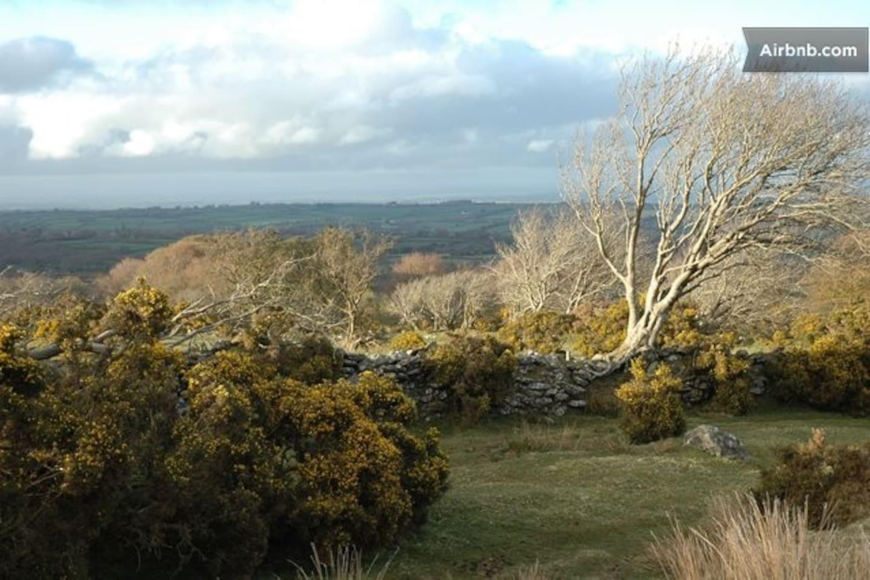 Walks on Dartmoor 15-20 min from house